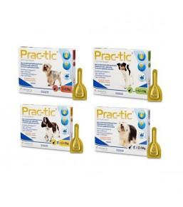 Prac-tic - Pipettes anti-puces et anti-tiques pour chien