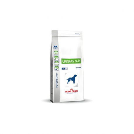 Royal Canin Urinary S/O chien - Croquettes