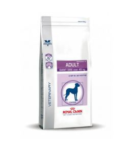 Royal Canin Adult Giant Dog (plus de 45kg) - Croquettes