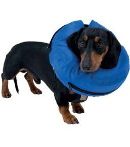 Collerette gonflable Buster pour chien ou chat