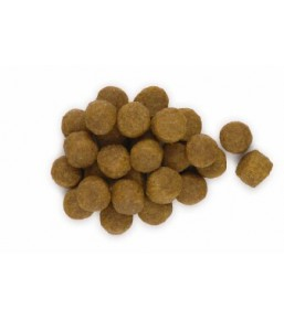 Hill's Science Plan Canine Adult Sensitive Stomach - Croquettes
