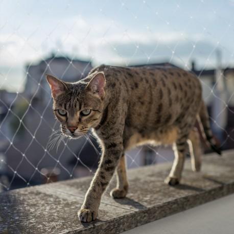 Filet de sécurité balcon pour chat - Duvo+