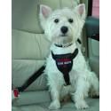 Clix Car Safe - Ceinture de sécurité pour chien