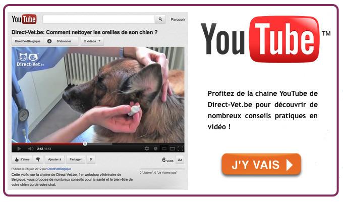 Chaine YouTube de Direct-Vet.be