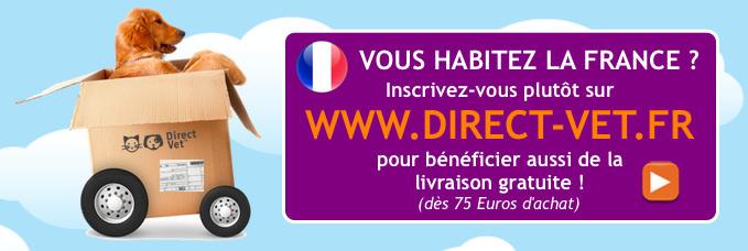 Vers le site français